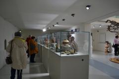 Al Museo della Ceramica di Savona - 7